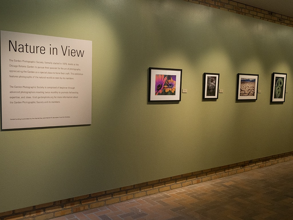 Nature in View Exhibition